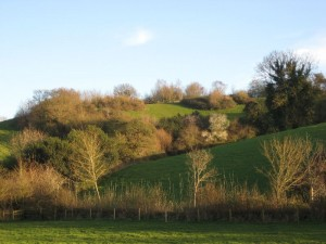 Ludwell Valley Park